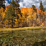 Fall Along Bishop Creek Art Print by Cat Connor