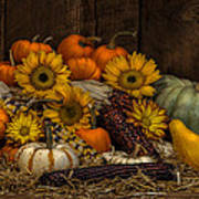 Fall Assortment Art Print