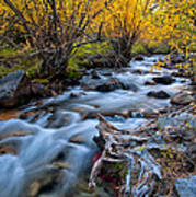Fall At Big Pine Creek Art Print