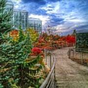 Fall At The Gardens Art Print