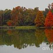 Fall At Tom Brown Park Art Print