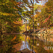 Fall At Valley Creek  Art Print