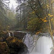 Fall At Whatcom Falls Art Print