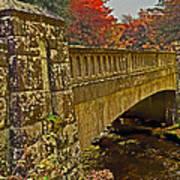 Fall Bridge Art Print