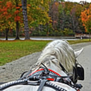 Fall Carriage Ride Art Print