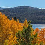 Fall Color At Caples Lake Art Print