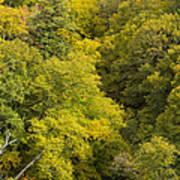 Fall Color Hills Mi 3 Art Print