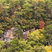 Fall Color In Little River Canyon Art Print