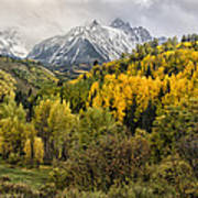 Fall Color In The Rockies Near Ouray Dsc07913 Art Print