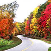 Fall Colors Along The Blueridge Parkway Art Print