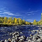 Fall Colors Along The Naches River Art Print