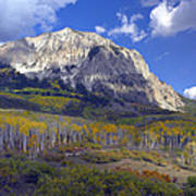 Fall Colors At Gunnison National Forest Art Print
