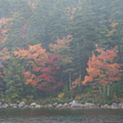 Fall Colors In Acadia National Park Maine Img 6483 Art Print