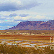 Fall Colors In The Lake Bed Art Print