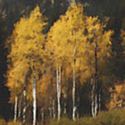 Fall Colors In Washington Cascades Art Print