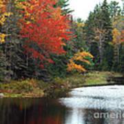 Fall Colors On A Lake Art Print