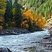Fall Colors On The River Art Print