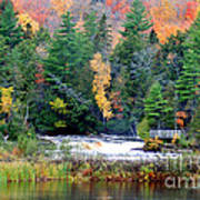Fall Colors On The  Tahquamenon River   Art Print