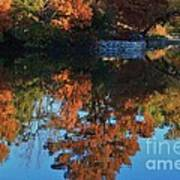 Fall Colors Water Reflection Art Print by Robert D  Brozek