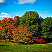 Fall Colours In Massachusetts Art Print