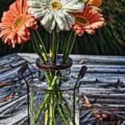 Fall Daisy Cheer Art Print