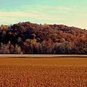 Fall Fields Art Print