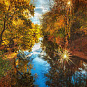 Fall Filtered Reflections Art Print by Sylvia J Zarco