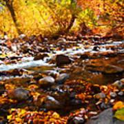 Fall Flow At Mcgee Creek Art Print