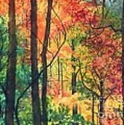 Fall Foliage Art Print by Barbara Jewell