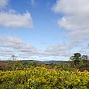 Fall Foliage Hilltop Landscape Art Print