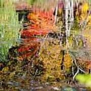 Fall Foliage Reflection 2 Art Print