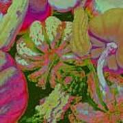 Fall Gourds Pinked Art Print