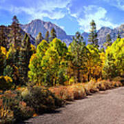 Fall Hiking In The High Sierras Art Print
