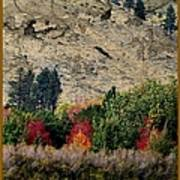 Fall In Carson Valley  Art Print