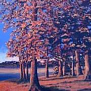 Fall In East Texas Art Print