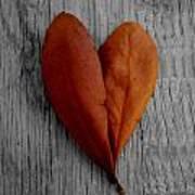 Fall In Love Art Print