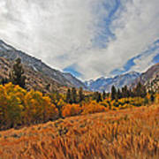 Fall In Lundy Canyon Art Print