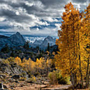 Fall In The Eastern Sierra Print by Cat Connor