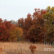 Fall In The Flint Hills Art Print