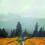 Fall In The Northwest Art Print