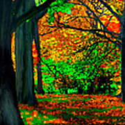 Fall Is Here Art Print