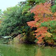 Fall Landscape Around The Lake 5 Art Print