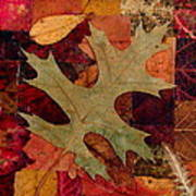 Fall Leaf Collage Art Print