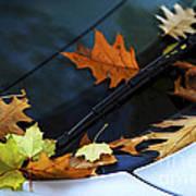 Fall Leaves On A Car Art Print