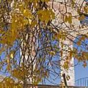 Fall Leaves On Open Windows Jerome Art Print