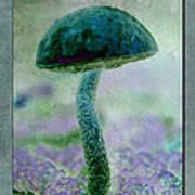 Fall Mushroom 19 Art Print