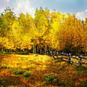 Fall Near Lake City Art Print