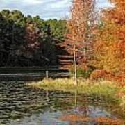Fall On The Lake Art Print