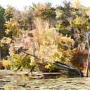 Fall Pond Art Print