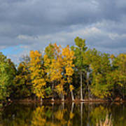 Fall Pond Reflection Art Print
